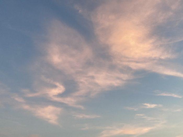 夏の空|吉祥寺・武蔵野市でリフォームするならONOYA東京 吉祥寺ショールーム